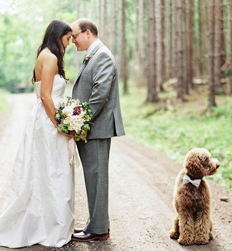 Animais de estimação em casamentos (1)