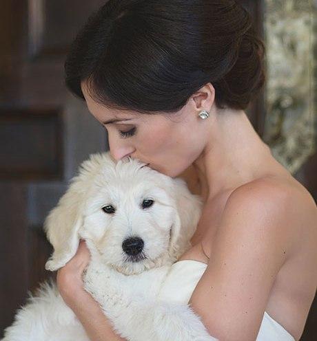 Animais de estimação em casamentos (13)