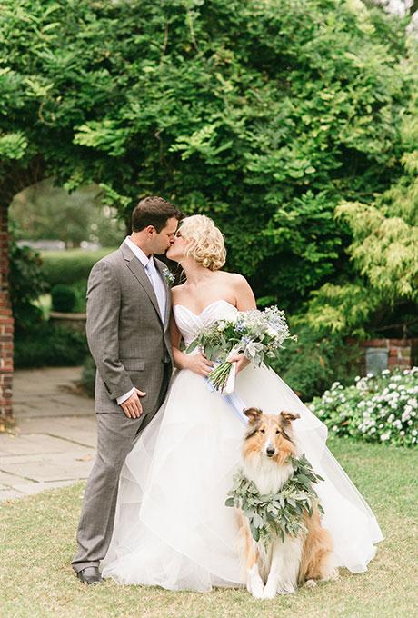 Animais de estimação em casamentos (16)