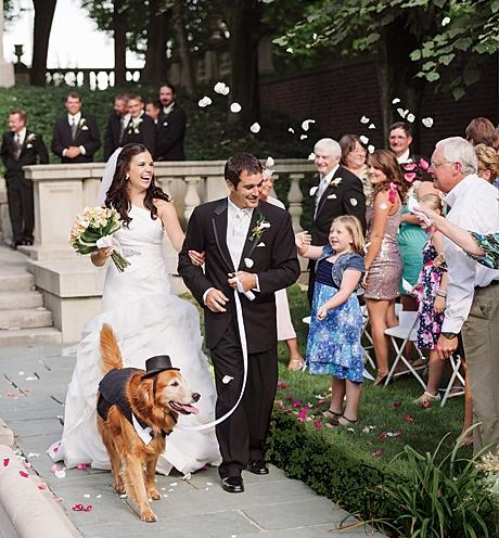 Animais de estimação em casamentos (19)